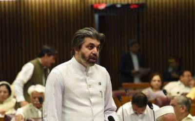 علی محمد خان کی محسن داوڑ اور علی وزیر پر الزام تراشی: قومی اسمبلی میں پیپلزپارٹی اور تحریک انصاف کے ارکان دست و گریبان