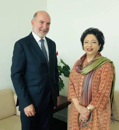 پاکستان میں 90فیصد قدرتی آفات موسمیاتی تبدیلی کے باعث رونما ہوئیں، ملیحہ لودھی