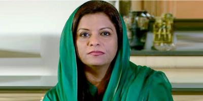 عمران خان اپنی نااہلی کا ملبہ سابق حکومتوں پر نہ ڈالیں، نفیسہ شاہ