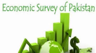 مشیر خزانہ رواں مالی سال کا اقتصادی سروے آج جاری کریں گے
