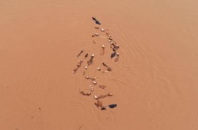چین میں سیلاب نے تباہی مچادی، 17 افراد ہلاک