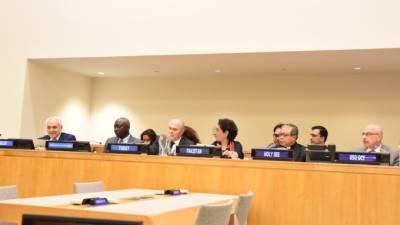 پاکستان نے اقوام متحدہ میں نفرت انگیز بیانات کے خلاف 6 نکات پیش کردیے