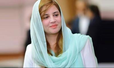 14 اگست سے اسلام آباد میں پلاسٹک بیگ کے استعمال پرپابندی ہوگی،زرتاج گل