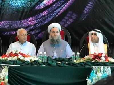 پاکستانی عازمین حج کی سہولت کیلئے مکہ مکرمہ اور مدینہ منورہ میں تمام جامع انتظامات کئے گئے ہیں:پیر نورالحق قادری