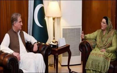 شاہ محمود قریشی سے فردوس عاشق کی ملاقات ،سیاسی امور پر تبادلہ خیال