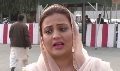 مسلم لیگ ن نے پاکستان کو ایٹم بم،موٹرویز،سی پیک سمیت بجلی کے منصوبے دیے۔عظمی بخاری
