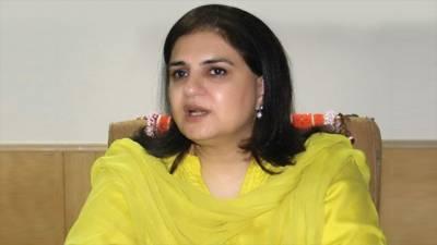 لوک ورثہ کرپشن ریفرنس: سینیٹر روبینہ خالد اور شریک ملزمان پر فرد جرم عائد