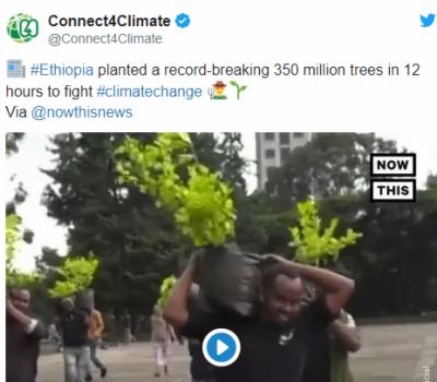 ایک دن میں 35 کروڑ پودے لگانے کا عالمی ریکارڈ
