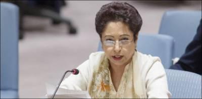 مقبوضہ کشمیرمیں انسانی حقوق کی خلاف ورزیوں پرانکوائری کمیشن قائم کیا جائے، ملیحہ لودھی