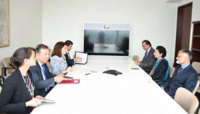 اقوام متحدہ: پاکستان کا مقبوضہ کشمیر میں انسانی حقوق کی پامالی پر انکوائری کمیشن کا مطالبہ