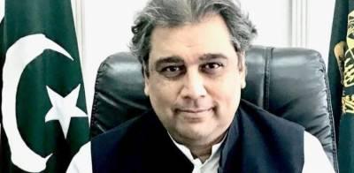 کوئی شبہ نہیں کشمیر ہماری شہ رگ ہے، آخردم تک اس کے لیے لڑیں گے، علی زیدی