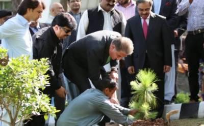 شاہ محمود قریشی نے وزارت خارجہ کے لان میں پودا لگاکر پلانٹ فار پاکستان شجر کاری مہم کا آغاز کر دیا