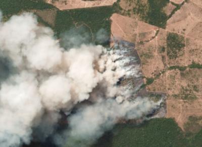 ایمیزون کے جنگلات میں لگی آگ سے دنیا کی آکسیجن کا بڑا ذریعہ جل کر راکھ ہونے کے قریب