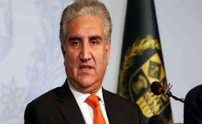 متحدہ عرب امارات پاکستان کا ہمدرد اور کشمیر کے موقف پر ساتھ ہے، وزیر خارجہ شاہ محمود قریشی