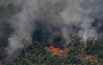 برازیل نے ایمیزون کے جنگلات کی آگ پر قابو پانے کی جی سیون کی پیشکش مسترد کر دی