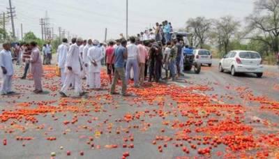 قلعہ سیف اللہ: تاجروں،کسانوں کا گاڑیوں میں لدے ٹماٹر سڑک پر پھینک کر احتجاج اور دھرنا