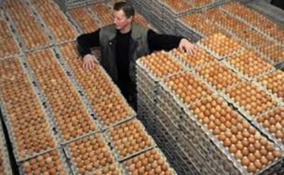 انڈونیشیا میں پولٹری بحران پر قابو پانے کے لئے ایک کروڑ انڈے تلف کرنے کا اعلان