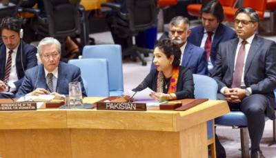 پاکستان نے ہمیشہ کہا ہے افغانستان کا حل فوجی نہیں، مذاکرات ہیں: ملیحہ لودھی