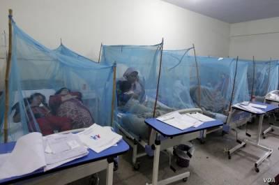 ملک بھر میں ڈینگی وائرس بے قابو