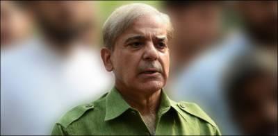 مسلم لیگ (ن) مولانا فضل الرحمان کے آزادی مارچ میں شرکت کرنے کا فیصلہ آج کرے گی