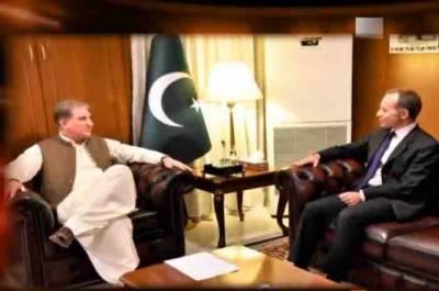 شاہ محمودسےبرطانوی ہائی کمشنرکی ملاقات،شاہی جوڑےکے دورہ پاکستان پر تبادلہ خیال