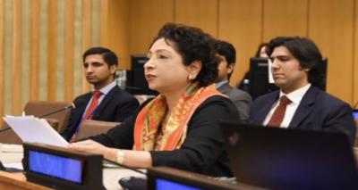 پاکستان کا دہشتگردی کی بنیادی وجوہات کے خاتمے کی کوششیں تیز کرنے کی ضرورت پر زور