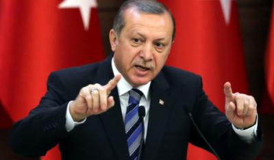 شمالی شام میں ترکی کی حالیہ کارروائی دہشتگردگروپوں کیخلاف ہے: طیب اردوان