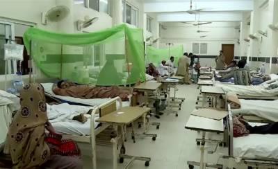 پنجاب میں 24 گھنٹوں میں 131 افراد ڈینگی کا شکار
