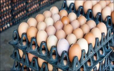 شہر قائد میں پلاسٹک سے بنے انڈوں کی فروخت کا انکشاف،دکاندار سمیت2گرفتار