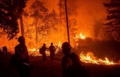 کیلیفورنیا اور لاس اینجلس کے جنگلات میں لگی آگ بے قابو