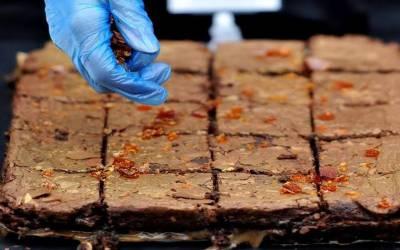 جرمن ریستوران نے غلطی سے جنازے میں حشیش سے بنا کیک کھلا دیا۔