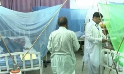 راولپنڈی میں ڈینگی بخار سے جاں بحق افراد کی تعداد 77 ہوگئی۔