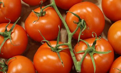سبزی منڈی میں ایرانی ٹماٹر کی آمد، قیمتوں میں نمایاں کمی