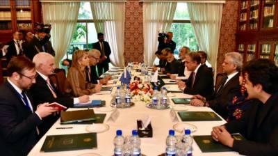 وزیر خارجہ شاہ محمود قریشی اور ہالینڈ کی ملکہ میکسیما کا پاکستان میں مالیاتی نظام کی ترقی پر تبادلہ خیال