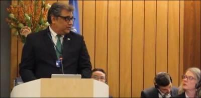 فشریز کی بہتری کی پالیسی تیار ہے بس عملدر آمد کرنا ہے: علی زیدی