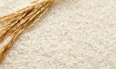 چاول کی برآمدات میں رواں مالی سال کے دوران 38.58 فیصد اضافہ ہوا:شماریات بیورو