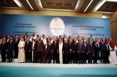 او آئی سی کا مقبوضہ کشمیر کی صورتحال پر خصوصی اجلاس بلانے کا فیصلہ
