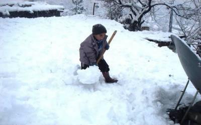 چترال میں برف باری رحمت کی بجائے زحمت بن گئی۔