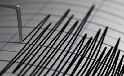 نیوزی لینڈ اور روس میں زلزلے کے جھٹکے محسوس کئے گئے