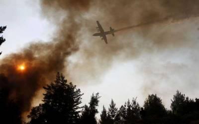چلی کے جنگلات میں لگنے والی آگ بے قابو ہوگئی۔
