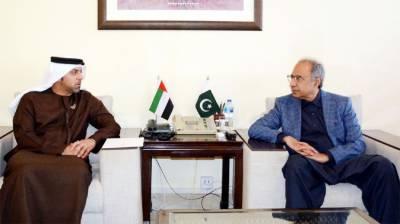 مشیرخزانہ کی پاکستان میں سرمایہ کاری کےلئےمتحدہ عرب امارات کی دلچسپی کی تعریف