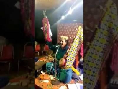 مقامی فنکار کی فنکاریاں، فائرنگ کی ویڈیو وائرل