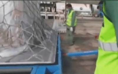 کوروناوائرس کیخلاف جنگ، چین سے ایک اور طیارہ امدادی سامان لے کر پاکستان پہنچ گیا