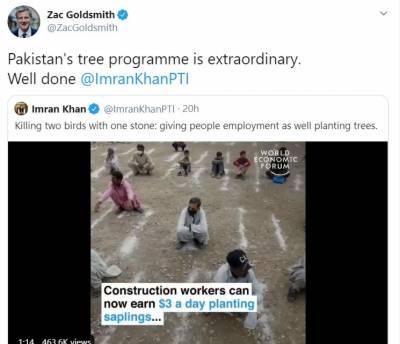 زیک گولڈسمتھ نے ایک ٹویٹ میں وزیراعظم عمران خان کے منصوبے کی تعریف کرتے ہوئے اسے ایک غیر معمولی پروگرام قرار دیا