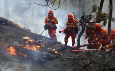 چین ، صوبہ یوننان کے جنگلات میں لگی آگ بجھا دی گئی