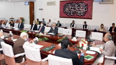 اقتصادی رابطہ کمیٹی نےعید سے قبل مزدوروں میں 75 ارب تقسیم کرنیکی منظوری دے دی۔