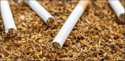 کرونا وائرس: تمباکو کے پتوں سے ویکسین تیار کرنے کا دعویٰ