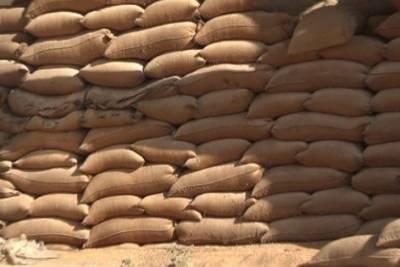 پاکپتن کی ضلعی انتظامیہ نے گندم ذخیرہ اندوزوں کے خلاف گھیرا تنگ کرتے ہوئے گوداموں سے 17 ہزار من گندم برآمد کرلی