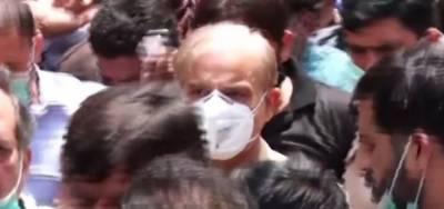 لاہور ہائیکورٹ: شہباز شریف کی 17 جون تک عبوری ضمانت منظور