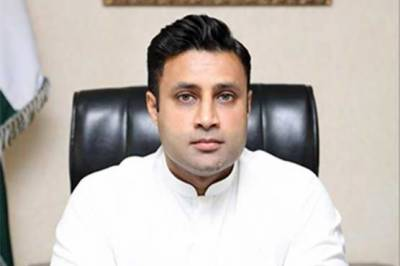 زلفی بخاری نے اوورسیز پاکستانیوں سے متعلق شیری رحمان کا بیان مسترد کر دیا